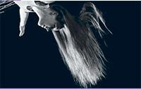 tzf 2006